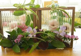 ふらこみお花の教室